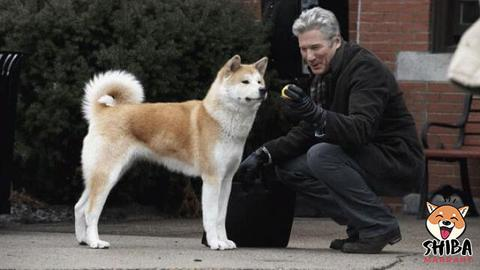 Hatchi et Richard Gere