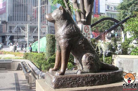 Statue Hachi